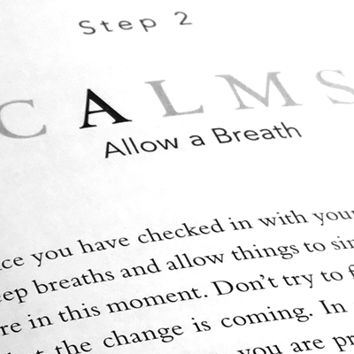 CALMS Book Design