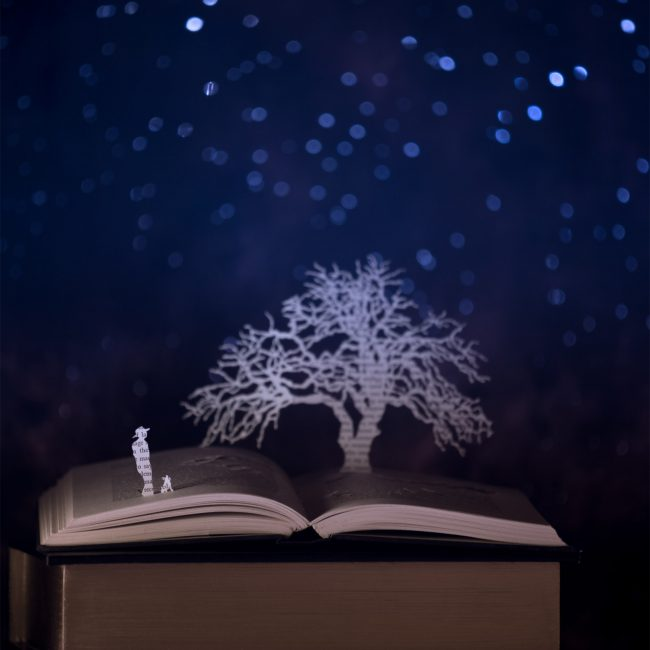 Ruben Lee Dalton Band, A Night Like This, I Grow Weed, Montana, Light Behind Your Eyes, Illustration, handout, oak tree, california, songwriter, landscape,